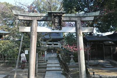 At the Gate of a Sub Shrine