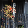 Traditional House. Gion, Kyoto.