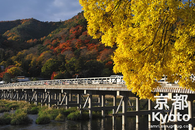 Autumn Colours at the Togetsukyo