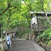 Mountain Pathway.<br /> At Youkoku-ji (a Buddhist Temple) in Nagaokakyo.