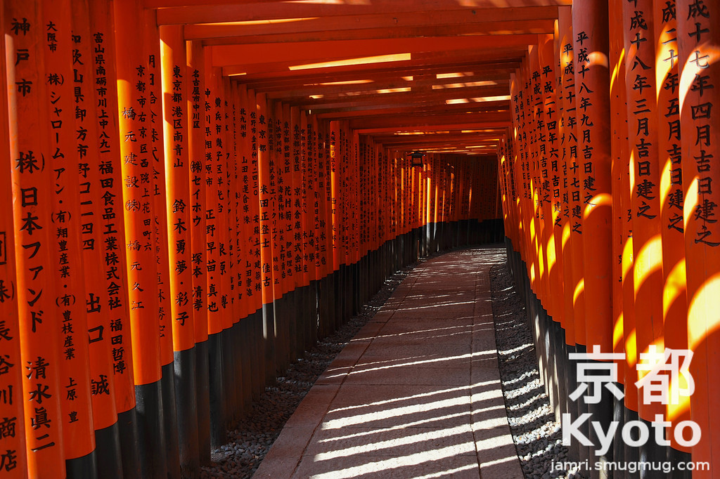 Torii Tunnel at Fushimi-Inari-taisha