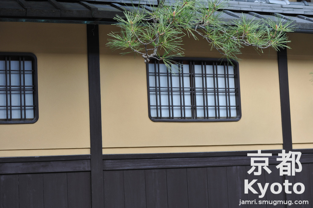 Traditional Kyoto Building with a bit of Pine